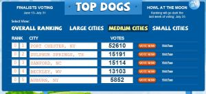 "Vote tally in the ""medium cities"" category as of July 8. Voting ends July 31."