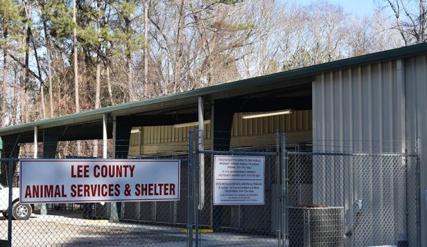 P1 - LCG Animal Shelter